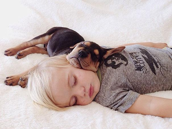 toddler-naps-with-puppy-theo-and-beau-13.jpg