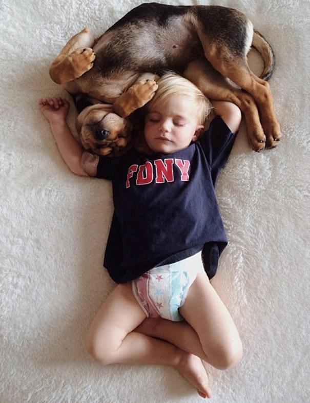 toddler-naps-with-puppy-theo-and-beau-2-10.jpg