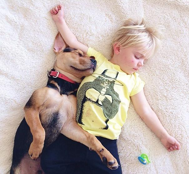 toddler-naps-with-puppy-theo-and-beau-2-3.jpg