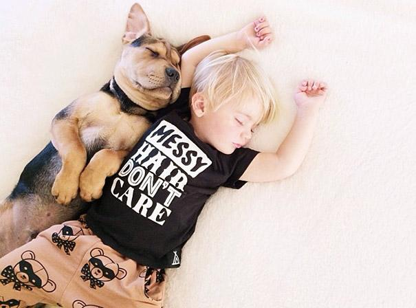 toddler-naps-with-puppy-theo-and-beau-2-4.jpg