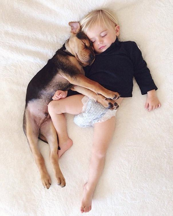 toddler-naps-with-puppy-theo-and-beau-2-7.jpg