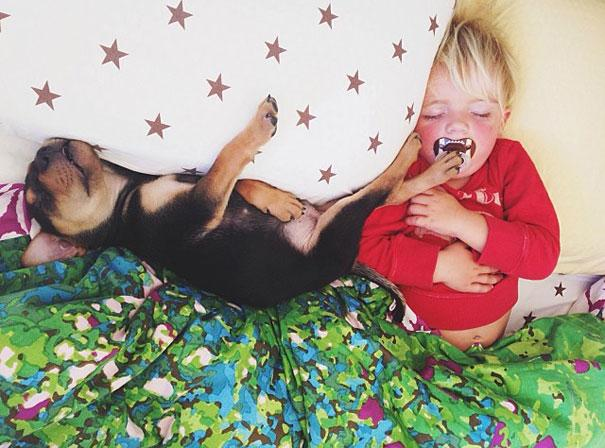 toddler-naps-with-puppy-theo-and-beau-2.jpg