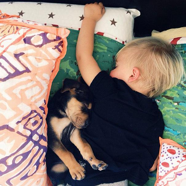 toddler-naps-with-puppy-theo-and-beau-3.jpg