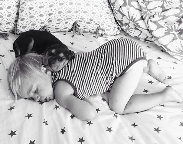 toddler-naps-with-puppy-theo-and-beau-5.jpg