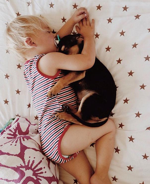 toddler-naps-with-puppy-theo-and-beau-6.jpg