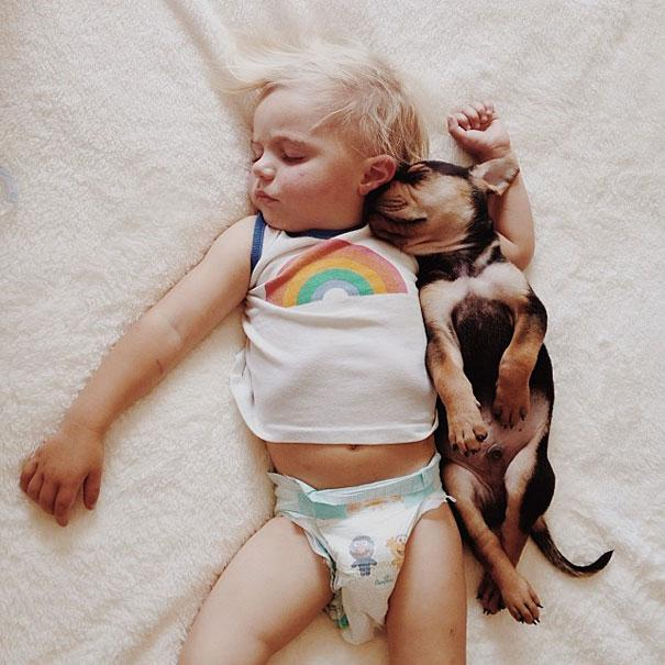 toddler-naps-with-puppy-theo-and-beau-7.jpg