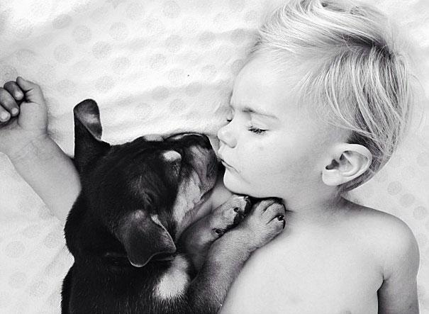 toddler-naps-with-puppy-theo-and-beau-8.jpg