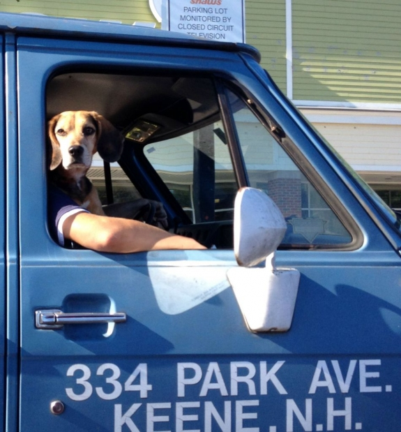 truckdog.jpg
