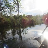 Hajóval a dzsungelben (2. rész)