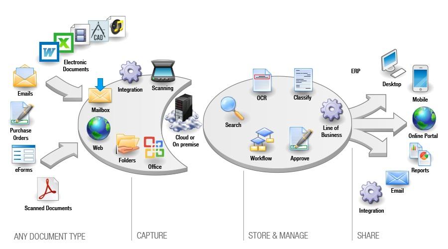 dmsdiagram.jpg