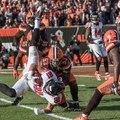 Joe Schobert az NFL egyik legjobb coverage linebackerje!