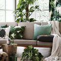 Green and Gold - ez lehet az átmenet az otthonodban