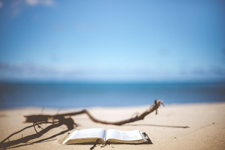 beach-1866992_960_720.jpg