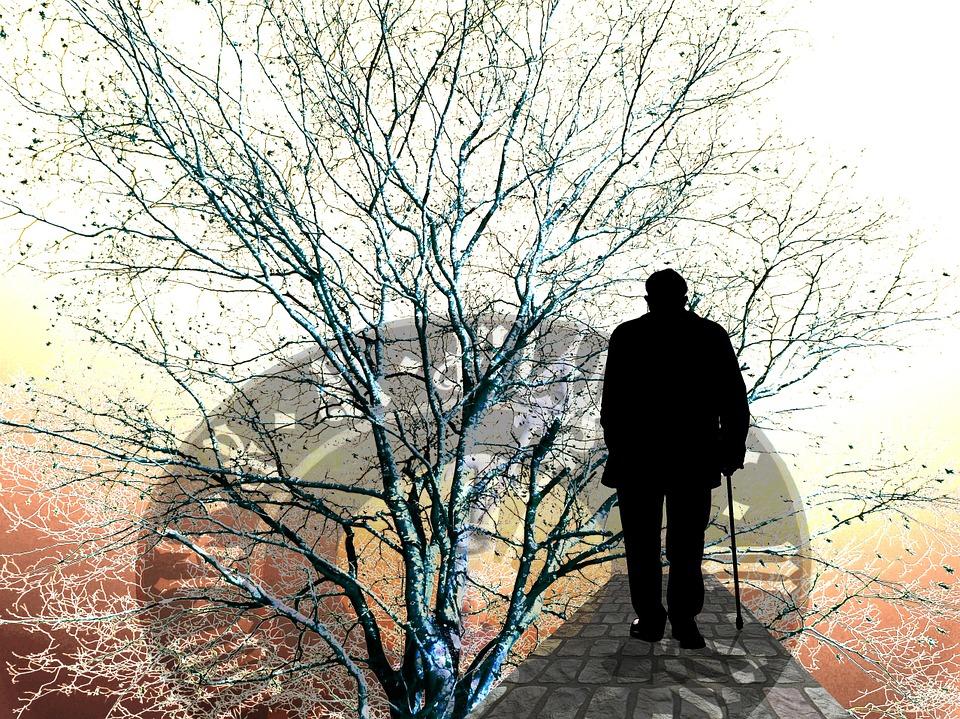 tree-97986_960_720.jpg