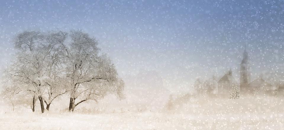 winter-4708429_960_720.jpg