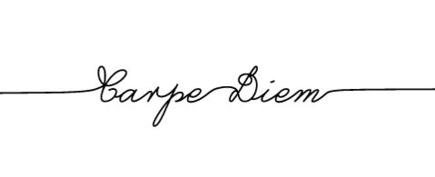carpe_diem_1.png