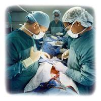 Szív transzplantáció