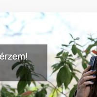 Google Nose - 15 millió illatbájtot ígér a keresőóriás