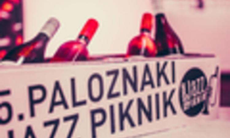 St. Germain is kikukucskált a backstage-ből - ilyen volt a Paloznaki Jazz Piknik
