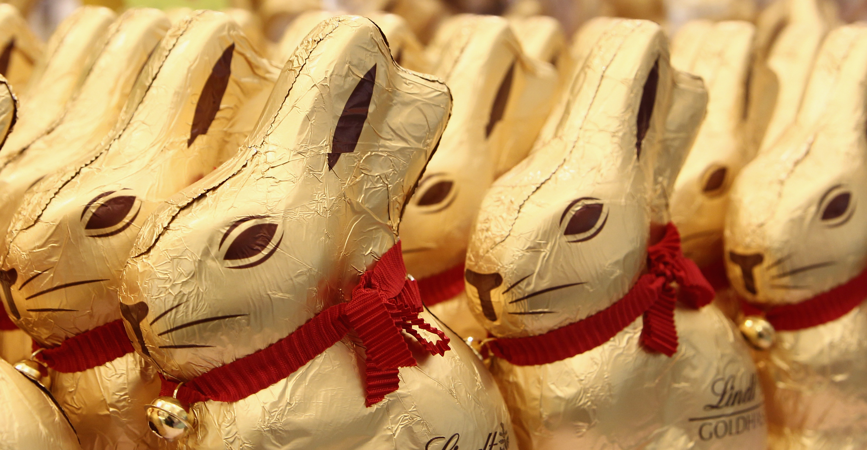 chocolate-gold-bunny2.jpg