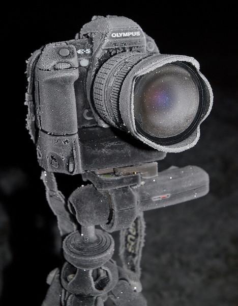 PC200002_web-L.jpg