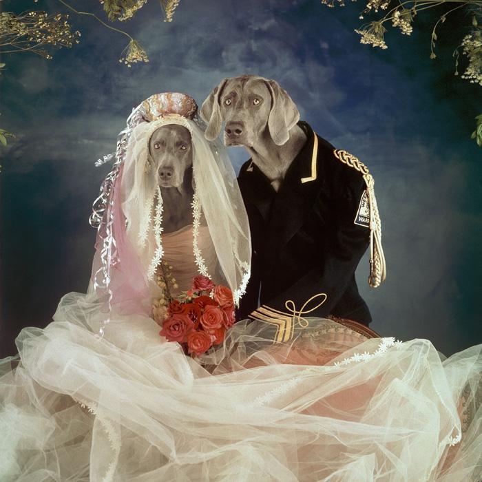 williamwegman_married_couple.jpg