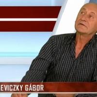 Reviczky Gábor a parkolóhely miatt ment a Nemzetihez