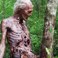 Digitálisan rohadnak a zombik a The Walking Dead hatodik évadában