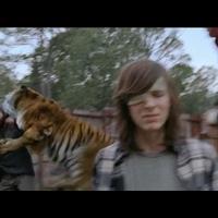 Nem tudni, hogy bírták ki röhögés nélkül a színészek a The Walking Dead legutóbbi tigrises jelenetét