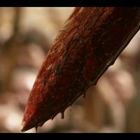 Vérrel, csöccsel, intrikával kezdett a Trónok harca negyedik évada