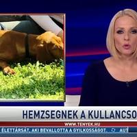 Tényekben minden csak a kígyózó sorokról, az RTL Híradóban a választásról volt szó