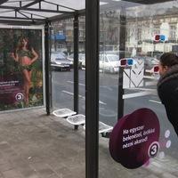 Horváth Éva domborodik a buszmegállókban