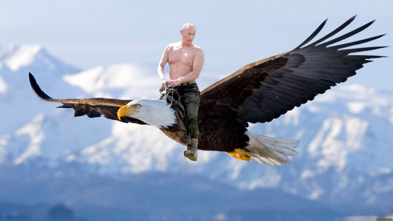 982b5e6d_putin-funny-pictures-more-in-commen_zps95bf97a5.jpeg