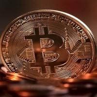 Tulipánhagyma-e a bitcoin?