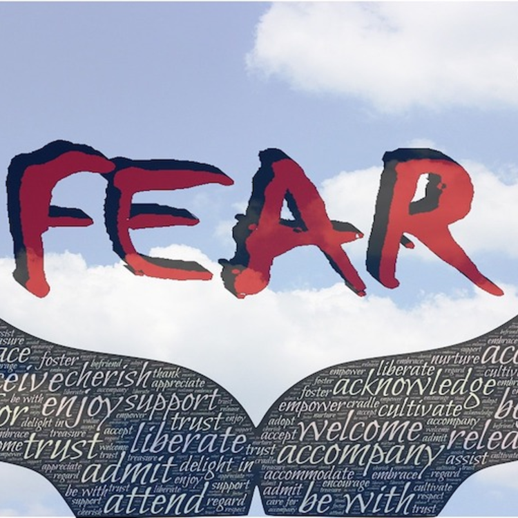 Légy kapzsi amikor mások félnek!