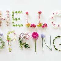 Helló tavasz!