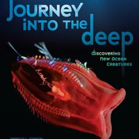 'FREE' Journey Into The Deep: Discovering New Ocean Creatures (Nonfiction - Grades 4-8). mantener Share Carnet firmware provide Pantalon robber