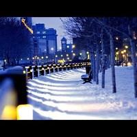 Chris Rea: Winter song