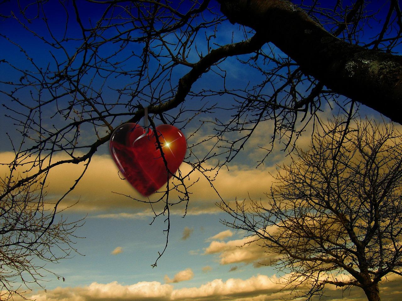 tree-68197_1280.jpg