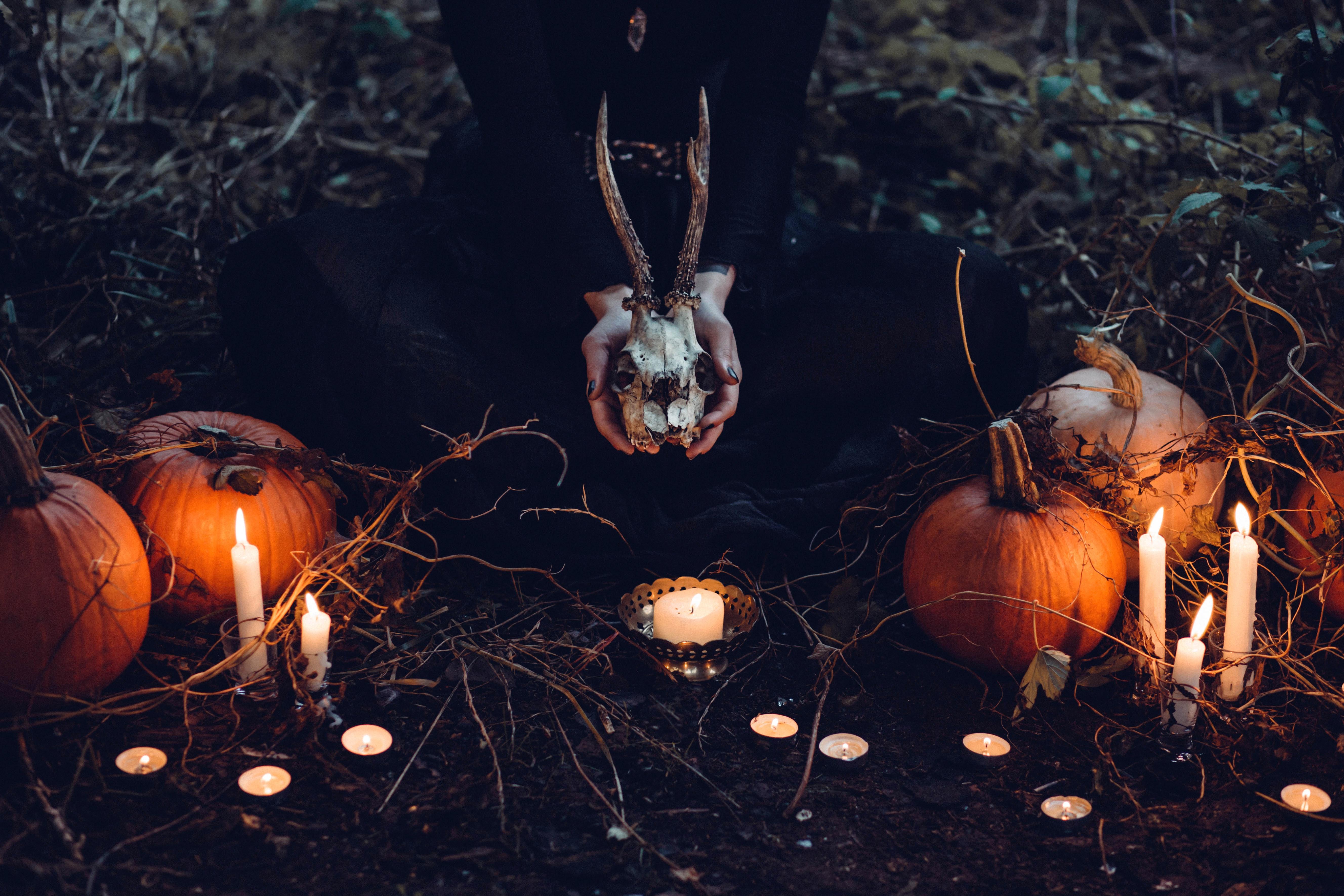 brown-pumpkin-halloween-decor-and-gray-skull-at-grass-field-211358.jpg