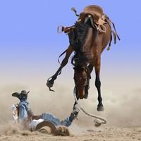 Rasszista a magas lovon