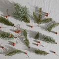 Karácsonyi készülődés könyvekkel - könyvajánló