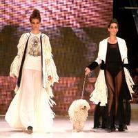 Gombold újra!: Élő közvetítés a divatshow-ról