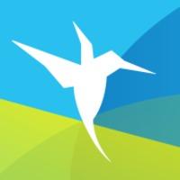 Colibri – Siker, tudatosság, karrier!