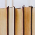 Könyvajánló - Olvasd el egy nap alatt!