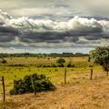 Felhőkkel teli május - Fotósorozat