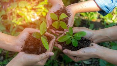 Újraindítás: Az ökológiai közgazdaságtan utópia vagy kulcs a fenntartható jövőhöz?