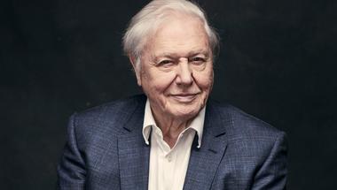 A természet hangja – David Attenborough-hódolat és portré