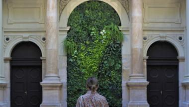 Megújult élő szőnyeg a Corvinus Egyetem aulájában - Az ikonikus zöldfal titkai