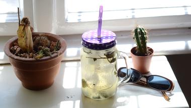 A karanténkovászoláson túl: fermentált italok készítése otthon